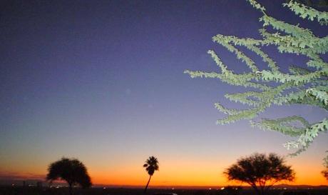 Sunrise_Cropped